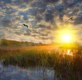 горячий заход солнца реки Стоковая Фотография
