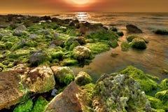 горячий заход солнца Стоковые Фотографии RF