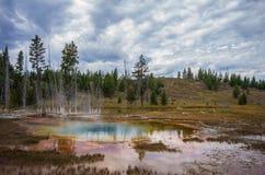 Горячий источник в национальном парке Йеллоустона Стоковое Изображение