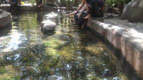 Горячий источник Sungai Klah, Малайзия Стоковые Изображения