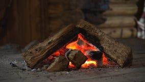 Горячий камин вполне горения древесины и огня видеоматериал