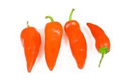 горячий красный цвет перца jalapeno Стоковые Фотографии RF