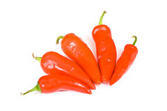 горячий красный цвет перца jalapeno Стоковые Изображения RF