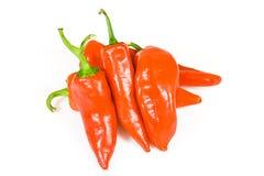 горячий красный цвет перца jalapeno Стоковые Фото