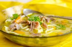Горячий куриный суп Стоковые Фото