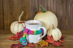 Горячий напиток какао со связанным шарфом и белыми тыквами стоковое изображение