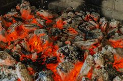 Горячий огонь Стоковые Изображения RF