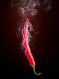 горячий перец Стоковая Фотография RF
