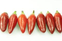 Горячий перец стоковое фото rf