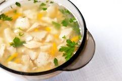 Горячий суп рыб Стоковое Изображение RF