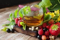 Горячий травяной чай с свежими ягодами и травами лета Стоковая Фотография