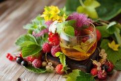 Горячий травяной чай с свежими ягодами и травами лета Стоковые Изображения