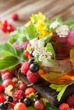 Горячий травяной чай с свежими ягодами и травами лета Стоковое Изображение