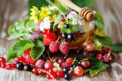 Горячий травяной чай с свежими ягодами и травами лета Стоковые Фотографии RF