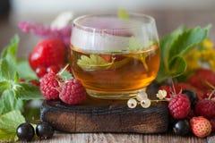 Горячий травяной чай с свежими ягодами и травами лета Стоковые Изображения RF