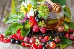 Горячий травяной чай с свежими ягодами и травами лета Стоковое Изображение RF