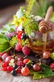 Горячий травяной чай с свежими ягодами и травами лета Стоковые Фото