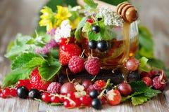 Горячий травяной чай с свежими ягодами и травами лета Стоковое Фото