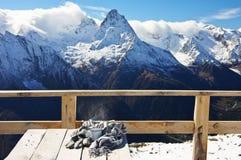Горячий чай в горах зимы Стоковое Изображение RF