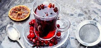 Горячий чай с клюквой стоковая фотография rf