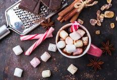 Горячий шоколад с зефирами и специями на таблице темноты grunge Стоковое Изображение RF