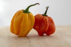 2 горячих перца habanero, различный цвет на деревянном столе, мексиканские плоды ингредиентов кухни очень горячие, созретых и unr стоковые фото