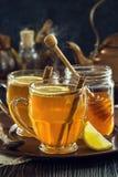 2 горячих Toddies или чая специи лимона Стоковые Фото