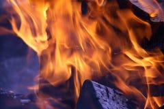 Горящая древесина в пламени пожара Стоковые Фото