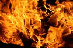 горящая древесина пожара Стоковые Фото