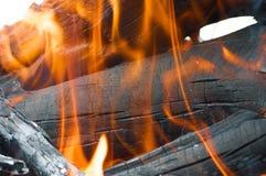 Горящая древесина Стоковые Изображения RF