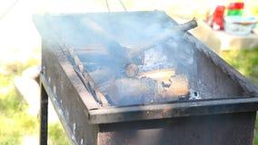 Горящая древесина в меднике для барбекю пожар сток-видео