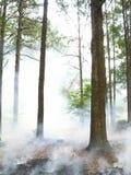 горящая сторновка стоковое изображение rf