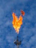 горящее газовое маслоо пирофакела Стоковое Изображение