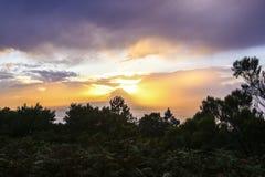 горящее небо Стоковая Фотография