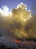 горящее поле Стоковые Фотографии RF