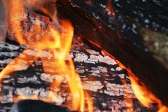 Горящие деревянные журналы, оранжевая прозрачная предпосылка пламен Стоковые Фото