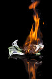 горящие деньги Стоковые Изображения
