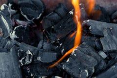 Горящие естественные угли в огне стоковое изображение