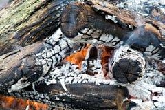 горящие журналы Стоковые Фото