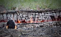 Горящие журналы и золы в костре на лесе Стоковая Фотография RF