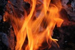 Горящие журналы с открытыми пламенами Стоковые Изображения