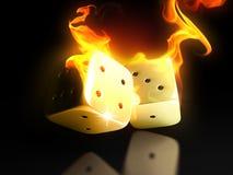 горящие плашки Стоковая Фотография RF