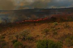 Горящие поля в холмах восточной Южной Африки стоковые фотографии rf