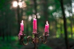 Горящие старые розовые свечи винтажного бронзового подсвечника Стоковые Фотографии RF