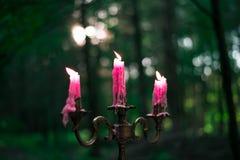 Горящие старые розовые свечи винтажного бронзового подсвечника Стоковые Фото