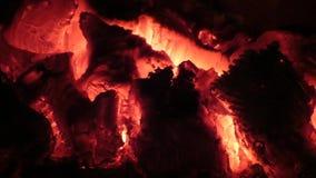 горящие угли Взгляд крупного плана накаленный докрасна накалять деревянный внутри плиты акции видеоматериалы