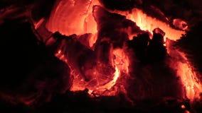 горящие угли Взгляд крупного плана накаленный докрасна накалять деревянный внутри плиты видеоматериал