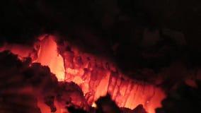 горящие угли Взгляд крупного плана накаленный докрасна накалять деревянный внутри плиты сток-видео