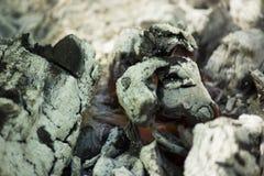 горящие угли после пикника стоковое изображение rf