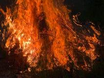 горящий ад пламени пожара Стоковое Фото